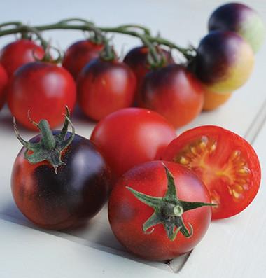 Indigo Cherry Drops