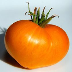 German Orange Strawberry